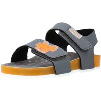 Chaussures Garçon Sandales et Nu-pieds Garvalin 212665 Gris
