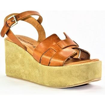 Chaussures Femme Sandales et Nu-pieds Sandro Rosi rosi CAMEL