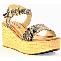 Chaussures Femme Sandales et Nu-pieds Sandro Rosi rosi CAMEL PYTHON