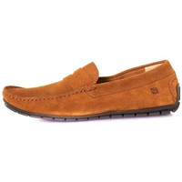 Chaussures Homme Baskets mode Chaussures Redskins SIOTTO CARAMEL cognac