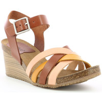 Chaussures Femme Sandales et Nu-pieds Kickers Solynia ROSE