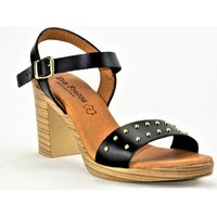 Chaussures Femme Sandales et Nu-pieds Eva Frutos 971N noir