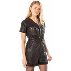 Vêtements Femme Robes Rose Garden CAMILLE SHEEP CENTAURUS VEG BLACK Noir