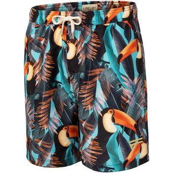 Vêtements Homme Maillots / Shorts de bain Pullin Short  PAKO TOUC MULTICOLORE