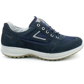 Chaussures Homme Baskets basses Grisport 8601.06_40 Bleu