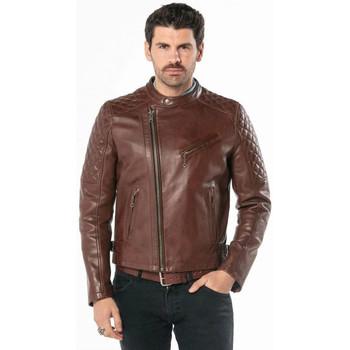 Vêtements Homme Vestes en cuir / synthétiques Daytona TRUCKSTON COW VEG DARK COGNAC Marron