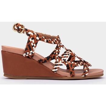 Chaussures Femme Sandales et Nu-pieds Pedro Miralles Salo Marron