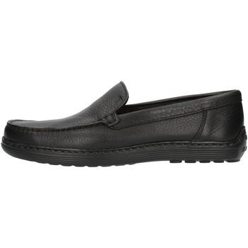 Chaussures Homme Mocassins Notton 807 Noir