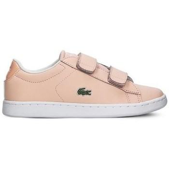 Chaussures Fille Baskets basses Lacoste Carnaby Evo Strap Rose