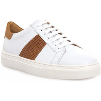 Chaussures Homme Baskets basses Soldini COLORADO BIANCO CUOIO Bianco
