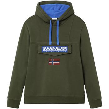 Vêtements Homme Sweats Napapijri Berber Vert
