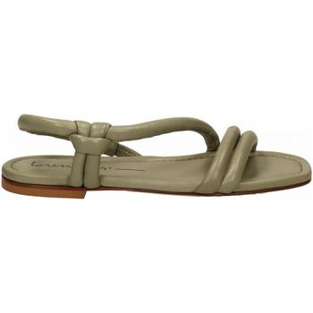 Chaussures Femme Sandales et Nu-pieds Lorena Paggi GLOVE salvia