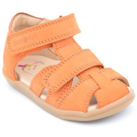 Chaussures Garçon Sandales et Nu-pieds Shoo Pom pika scratch Orange