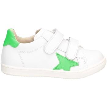 Chaussures Garçon Baskets basses Gioiecologiche 5561 blanc vert
