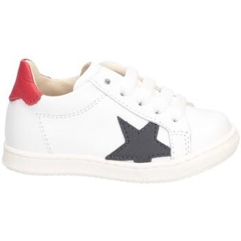 Chaussures Garçon Baskets basses Gioiecologiche 5565 Blanc bleu