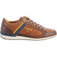 Chaussures Homme Baskets basses Pantofola d'Oro Basket Cuir  Matero Uomo Coquille de Tortue