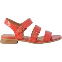 Chaussures Femme Sandales et Nu-pieds The Divine Factory Sandale Corail