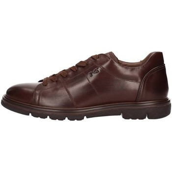 Chaussures Homme Baskets basses NeroGiardini A800552U MARRON