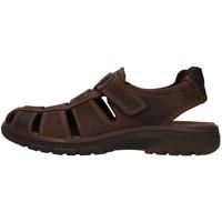 Chaussures Homme Sandales et Nu-pieds Enval 7219111 MARRON