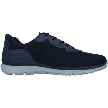 Chaussures Homme Baskets basses Enval 7218211 BLEU