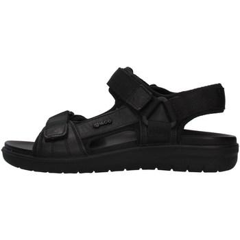 Chaussures Homme Sandales et Nu-pieds IgI&CO 7131000 NOIR