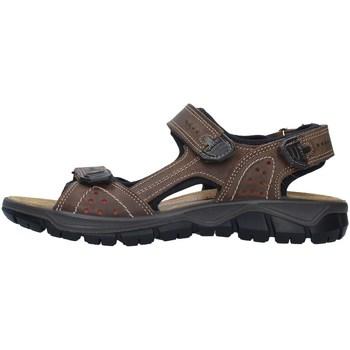 Chaussures Homme Sandales sport IgI&CO 7130022 BEIGE