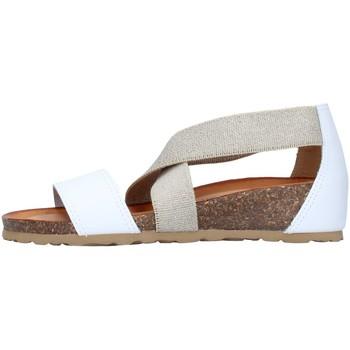 Chaussures Femme Sandales et Nu-pieds IgI&CO 7185055 BLANC