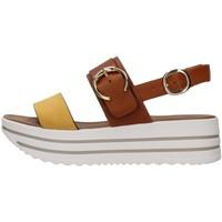 Chaussures Femme Sandales et Nu-pieds NeroGiardini E115711D MARRON