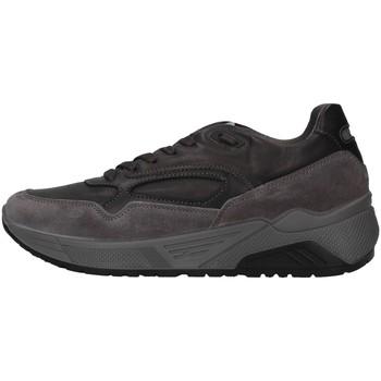Chaussures Homme Baskets basses IgI&CO 6142422 GRIS