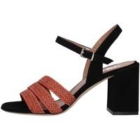 Chaussures Femme Sandales et Nu-pieds Tres Jolie 2034/BUY MARRON