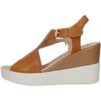 Chaussures Femme Marques à la une Stonefly 213914 BEIGE