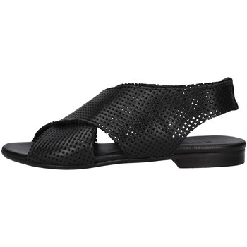 Chaussures Femme Sandales et Nu-pieds Zoe DAFFY064 NOIR
