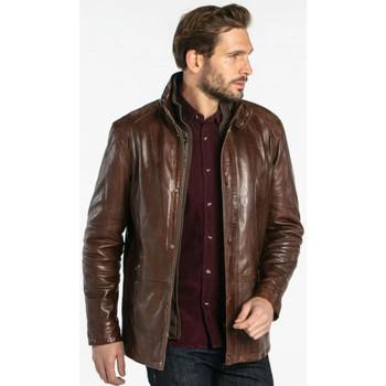 Vêtements Homme Vestes en cuir / synthétiques Daytona GLOSTER IC LAMB ZENITH BISON Bison