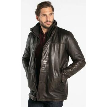 Vêtements Homme Vestes en cuir / synthétiques Daytona TYLER LAMB ZENITH BROWN Marron