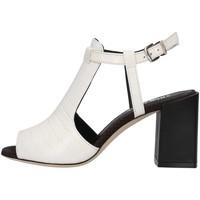 Chaussures Femme Sandales et Nu-pieds Tres Jolie 2025/BUY BLANC