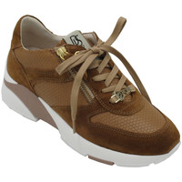 Chaussures Femme Baskets basses Dl Lussil Sport ADLUSSIL4638marr marrone
