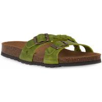 Chaussures Femme Mules Bioline 233 ALOHE INGRASSATO Verde