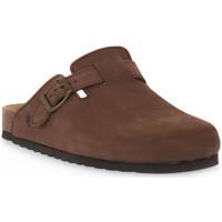 Chaussures Sabots Bioline 1900 MORO NABOUK Marrone