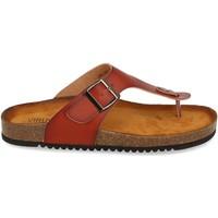 Chaussures Femme Sandales et Nu-pieds Clowse VR1-267 Camel