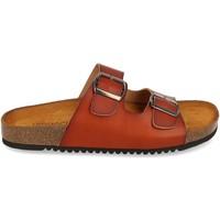 Chaussures Femme Sandales et Nu-pieds Clowse VR1-268 Camel