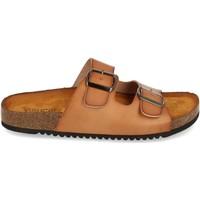 Chaussures Femme Sandales et Nu-pieds Clowse VR1-268 Kaki