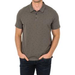 Vêtements Homme Polos manches courtes Armani jeans Polo manches courtes Gris