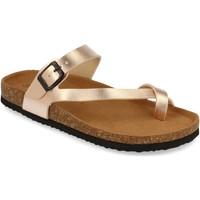 Chaussures Femme Sandales et Nu-pieds Silvian Heach M-15 Champan
