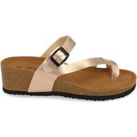 Chaussures Femme Sandales et Nu-pieds Silvian Heach M-28 Champan