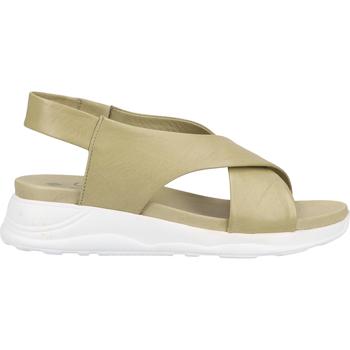 Chaussures Femme Sandales et Nu-pieds Ilc Sandales Khaki