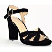 Chaussures Femme Sandales et Nu-pieds Sofia Costa 5883 NOIR