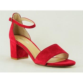 Chaussures Femme Sandales et Nu-pieds Sofia Costa 8372 ROUGE
