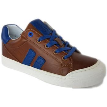 Chaussures Garçon Baskets basses Bellamy Gag cognac