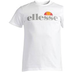Vêtements Homme T-shirts manches courtes Ellesse ECRINS T-SHIRT BLANC