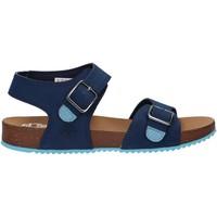 Chaussures Enfant Sandales et Nu-pieds Timberland A4331 CASTLE ISLAND Azul